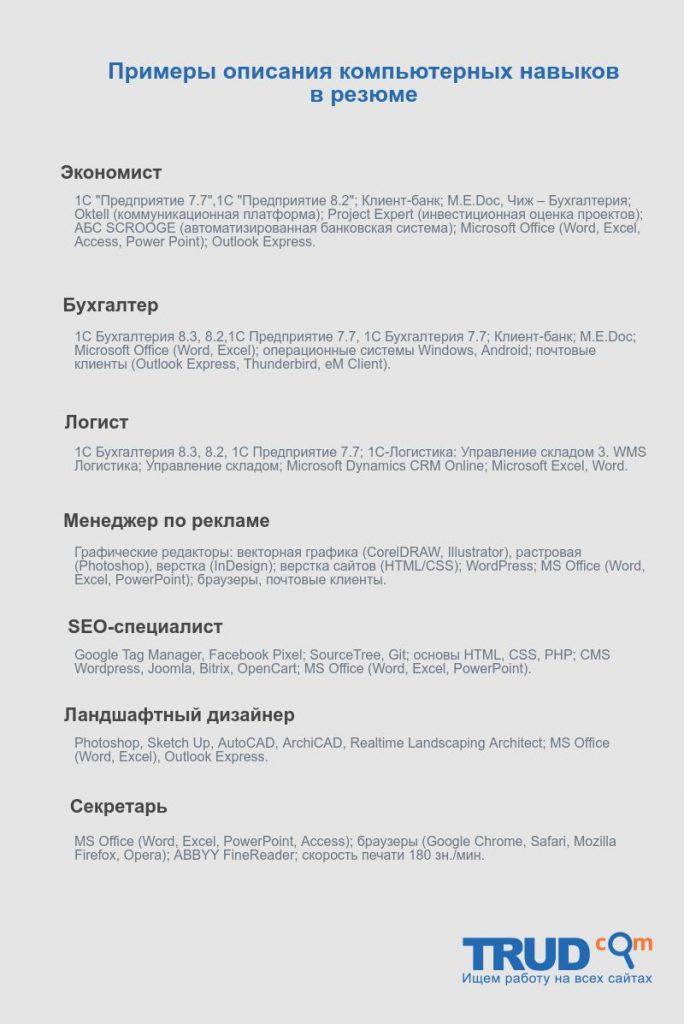 """Инфографика на тему """"Компьютерные навыки в резюме примеры"""""""